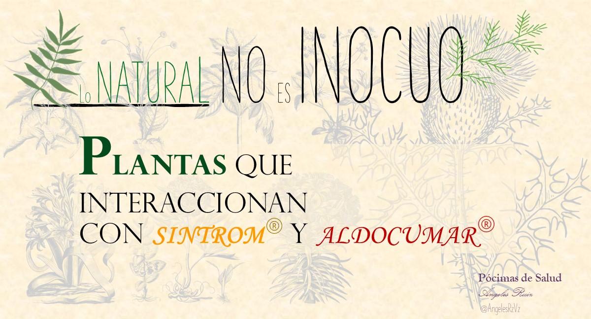 Lo Natural No es Inocuo Plantas que pueden interferir con el sintrom y aldocumar