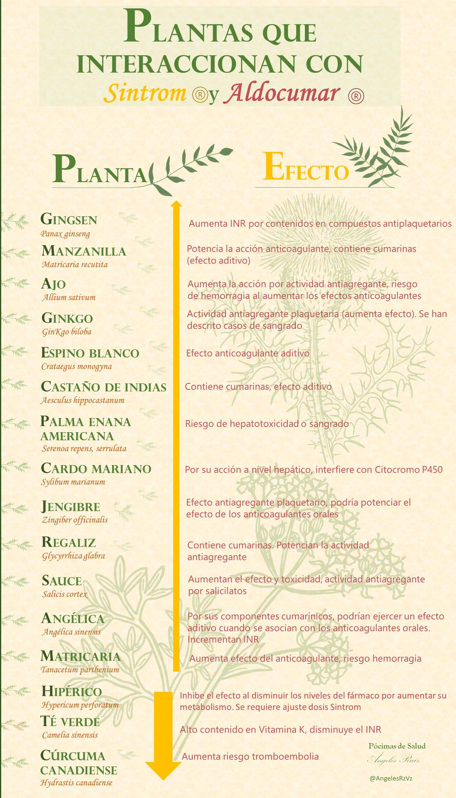 Plantas medicinales que interaccionan con el Sintrom y Aldocumar