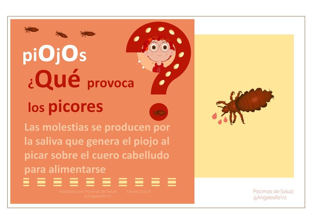 ¿Cuál es el síntoma más frecuente de la presencia de piojos?